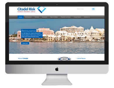 Citadel Risk Website, graphic design and marketing