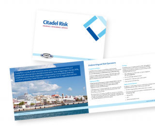 citadel risk brochure, graphic design and marketing