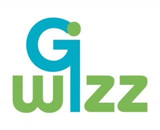 G-wizz Logo, graphic design and marketing