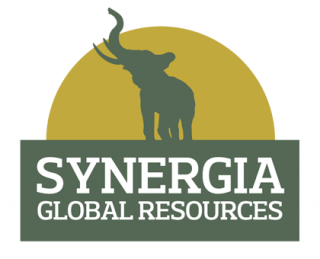 Synergia Brand, graphic design and marketing